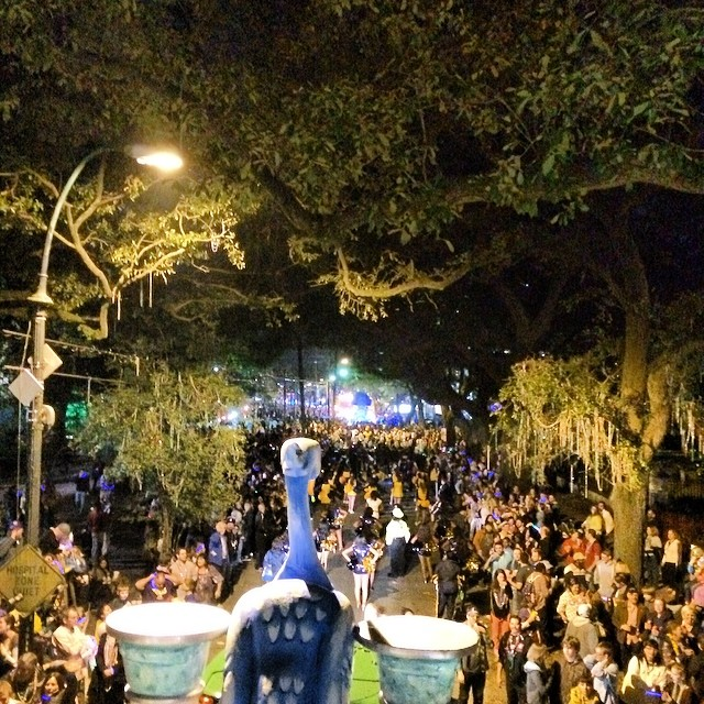 11 Cleopatra   Ride in Our Mardi Gras Parade